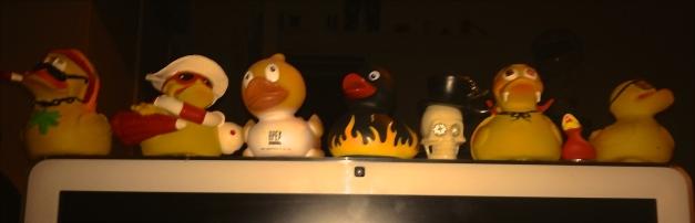 Neuzugang: Ente in flames